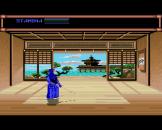 Budokan The Martial Spirit Screenshot 4 (Amiga 500)
