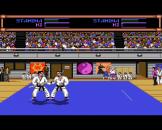 Budokan The Martial Spirit Screenshot 7 (Amiga 500)