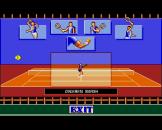 Advantage Tennis Screenshot 0 (Amiga 500/600/1200)