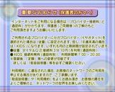 Dream Passport 3 (Cd) For The Dreamcast (Japanese Version)