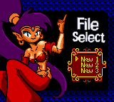 Shantae Screenshot 1 (Game Boy Color)