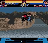 Street Fighter Alpha: Warriors' Dreams Screenshot 14 (Game Boy Color)