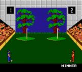 Double Dare Screenshot 19 (Nintendo (US Version))