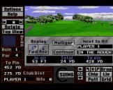 Links: The Challenge of Golf Screenshot 5 (Sega CD (US Version))
