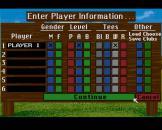 Links: The Challenge of Golf Screenshot 11 (Sega CD (US Version))