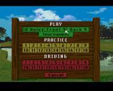 Links: The Challenge of Golf Screenshot 12 (Sega CD (US Version))