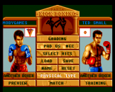 Andre Panza Kick Boxing Screenshot 1 (PC Engine (EU Version)/TurboGrafix-16 (US Version))
